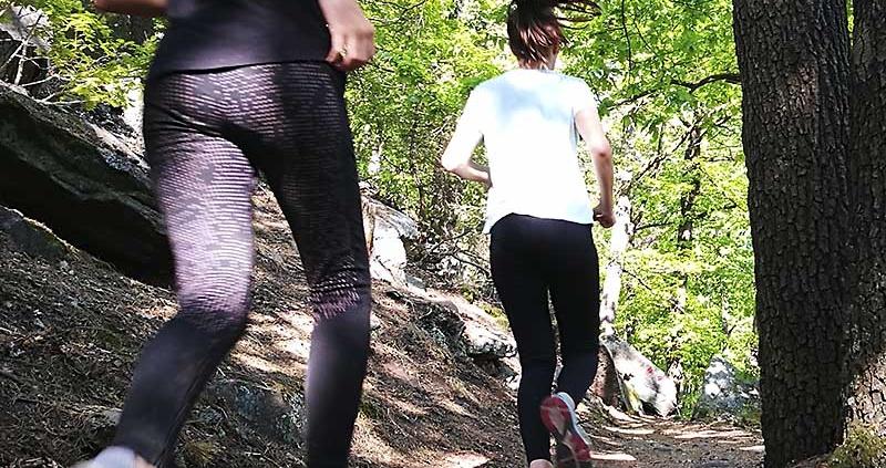 Lauftraining im Wald